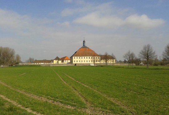 Das Schloß Kislau im März 2014